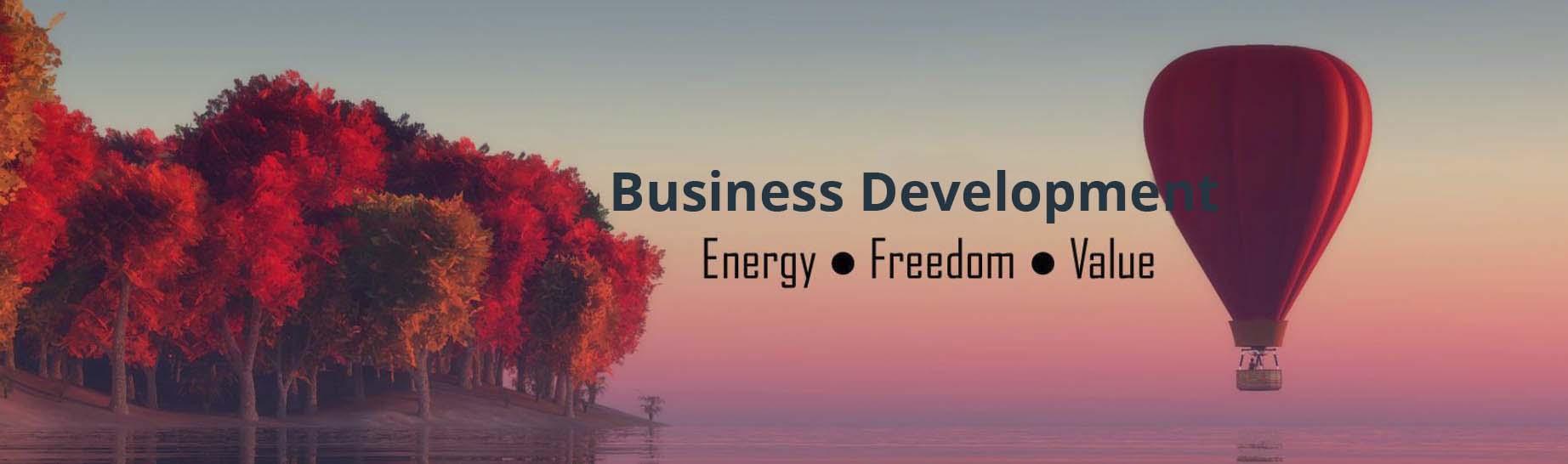 business_dev_banner_2